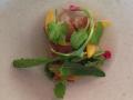 Kycklingskinn i många lager, saltade plommon och rädisskott
